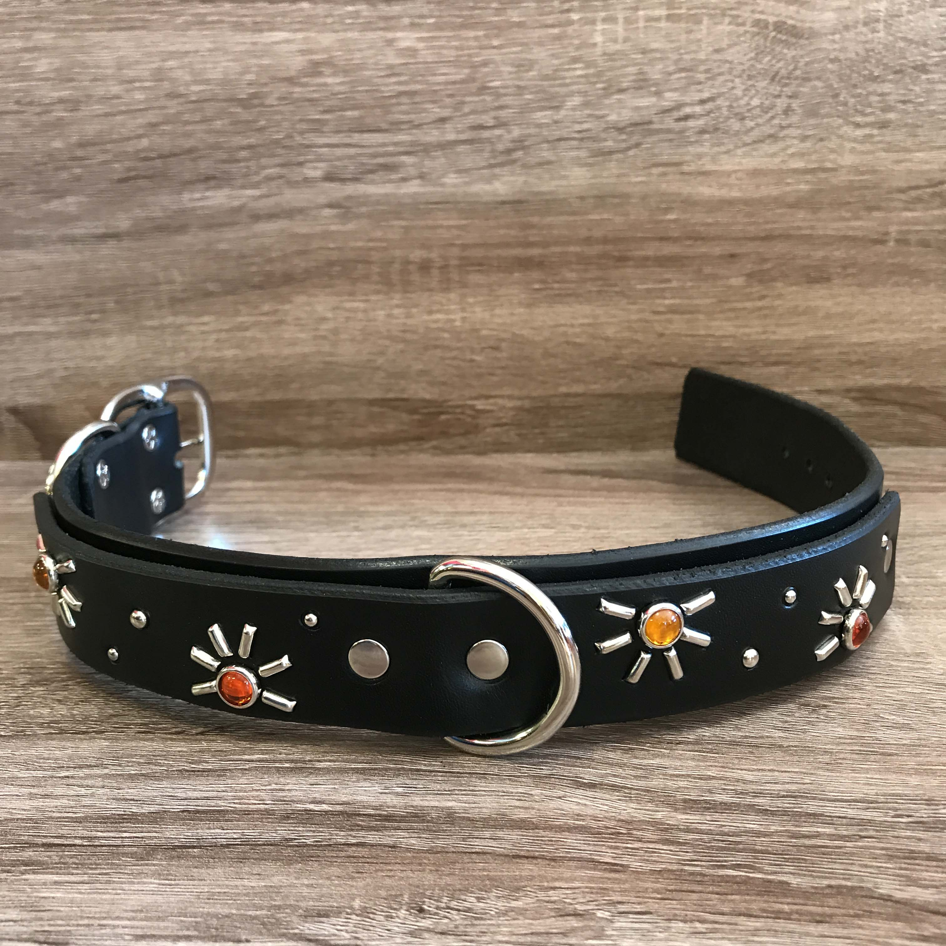 Recommended Space Dog Collar